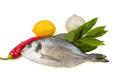 Vissen en kruiden. Royalty-vrije Stock Foto's