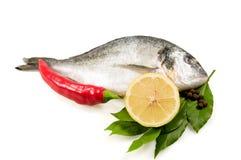 Vissen en kruiden. Stock Fotografie