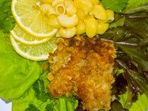 Vissen en macaroni Royalty-vrije Stock Foto's