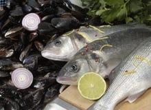 Vissen en Mosselen Stock Afbeelding