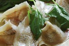 Vissen en spinazie Royalty-vrije Stock Afbeeldingen