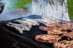 Vissen en varkensvleesgrill stock afbeeldingen