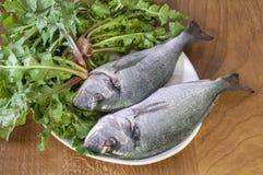 Vissen en wilde greens Royalty-vrije Stock Foto's