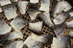 Vissen het drogen Stock Foto's