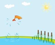 Vissen het springen Stock Fotografie