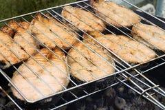 Vissen kebab hierboven Royalty-vrije Stock Foto's