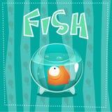 Vissen in kom met water en achtergrond royalty-vrije stock foto's