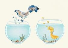Vissen in liefde die aan aquarium aan zijn geliefd, romantisch concept de dag van Valentine springen ` s stock afbeeldingen