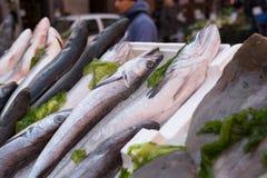 Vissen in markt worden blootgesteld die royalty-vrije stock afbeelding