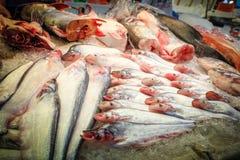 vissen in markten worden verkocht die stock foto
