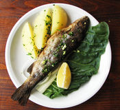 Vissen met gekookte aardappels en citroen Stock Afbeelding