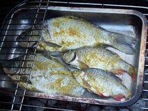 Vissen met kruid bij de grill stock video