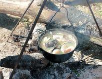 Vissen op de brand Stock Afbeelding