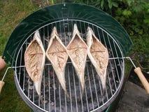 Vissen op de brand Royalty-vrije Stock Foto