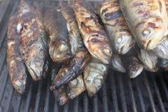 Vissen op de grill stock afbeelding