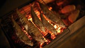 Vissen op de grill worden gebakken die stock footage