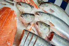 Vissen op de teller in de supermarkt stock foto