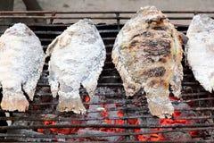 Vissen op een houtskoolgrill Stock Fotografie