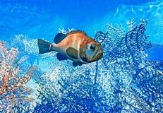 Vissen op ertsader - 3d illustratie Stock Afbeelding
