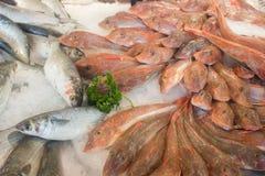 Vissen op ijs op markt Royalty-vrije Stock Foto