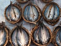 Vissen op open markt in Azië Royalty-vrije Stock Afbeeldingen