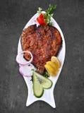Vissen op Oven stock foto's