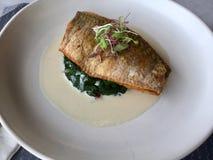 Vissen op spinazie Witte Wijnsaus heerlijk Stock Foto's