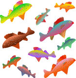 Vissen in regenboogkleuren die worden geschilderd Royalty-vrije Stock Afbeelding