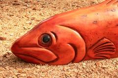 Vissen uit water Royalty-vrije Stock Foto's