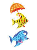 Vissen van de schoonheid. Royalty-vrije Stock Afbeelding