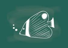 Vissen, vector van vissen die op bordkrijt trekken Stock Afbeeldingen