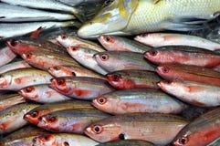 Vissen voor verkoop in Hongkong royalty-vrije stock afbeelding
