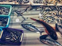Vissen werkende visser stock afbeeldingen