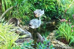 Vissenbeeldhouwwerk Stock Foto's