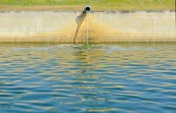 Vissenbroedplaats stock foto's
