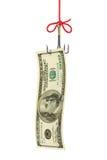 Vissend haak en geld Stock Foto's