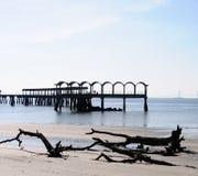 Vissend pijler en strand Stock Foto
