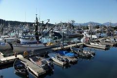 Vissende haven stock afbeelding