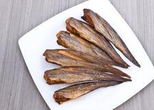 Vissengebraden gerechten Stock Foto