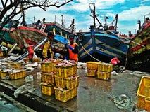 Vissenhaven Royalty-vrije Stock Foto's