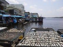 Vissenhaven in NaKhonSiThammarat, Thailand Royalty-vrije Stock Foto's
