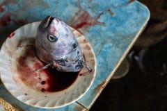 Vissenhoofd op een plaat Stock Afbeelding