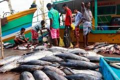 Vissenmarkt Stock Afbeelding