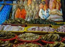 Vissenmarkt in Manilla, Filippijnen Royalty-vrije Stock Foto's