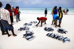 Vissenmarkt op het strand Stock Foto's