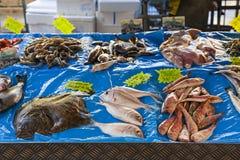 Vissenmarkt in oud Nice Stock Foto's
