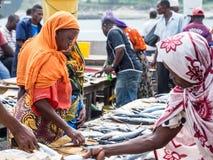 Vissenmarkt in Sar S Salaam, Tanzania Stock Fotografie