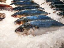Vissenmarkt, Voedsel Stock Afbeeldingen