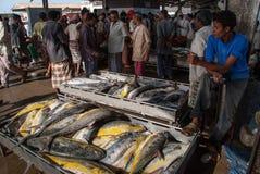 Vissenmarkt in Yemen Stock Foto's