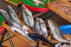 Vissenmarkt & Zeevruchten: Istanboel, Bosphorus Royalty-vrije Stock Foto